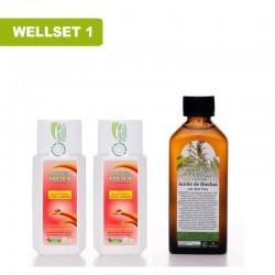 WellSet1
